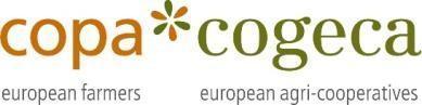 Copa Cocega